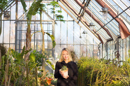 floriculture: Portrait of florists woman working with flowers in a greenhouse holding a pot plant in her hand. Small business owner.