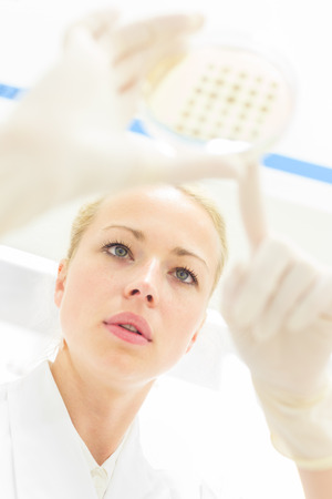 drug discovery: Female life science professional observing cell culture samples on LB agar medium in petri dish.  Scientist grafting bacteria in microbiological analytical laboratory .  Focus on scientists eye. Stock Photo