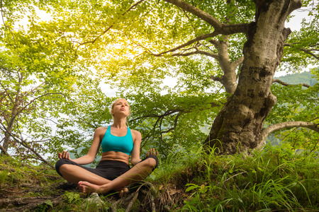 feeling happy: Relaxed woman enjoying freedom and life in beautiful natural environment. Blissful girl in lotus pose feeling relaxed, free and happy. Concept of freedom, happiness, enjoyment and natural balance. Stock Photo