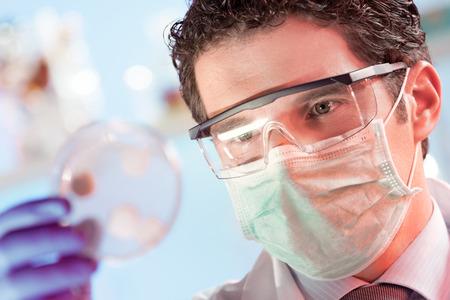 biotecnologia: Máscara y gafas investigador de ciencias biológicas protegidas observar células potencialmente infecciosas en placa de Petri. Centrarse en el ojo del científico. Salud y concepto de la biotecnología. Foto de archivo