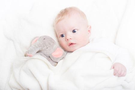 blonde yeux bleus: Blonds Mignon petit garçon aux yeux bleus avec son ours en peluche en peluche préférée et l'éléphant.