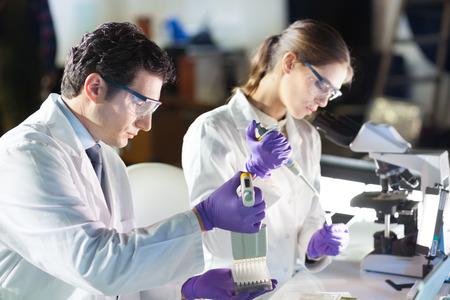 Life scientist researching in laboratory.  Foto de archivo