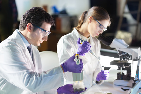 scientific experiment: Life scientist researching in laboratory.  Stock Photo