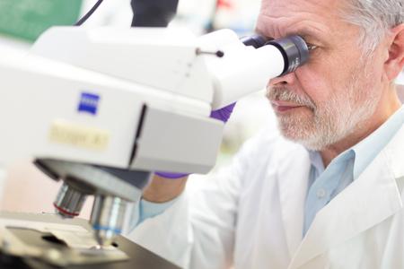 Senior head scientist  microscoping
