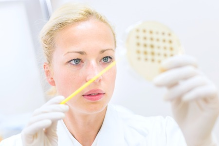 agar: Female life science professional observing cell culture samples on LB agar medium in petri dish.  Scientist grafting bacteria in microbiological analytical laboratory .  Focus on scientists eye. Stock Photo