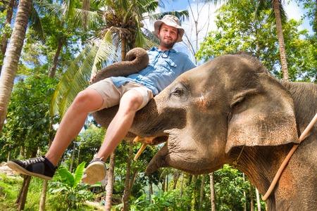 animales de la selva: elefante domesticado levantar un turista con su tronco. Foto de archivo
