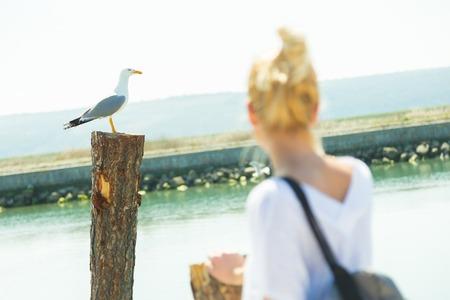 salina: Woman watching seagull in salina. Summertime feeling. Stock Photo