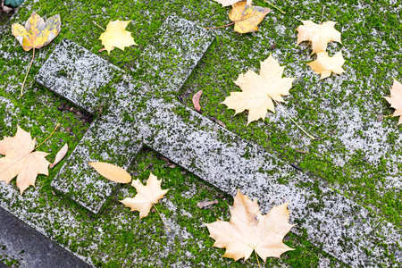 hojas antiguas: Vieja tumba cristiano, cruz de piedra tallada olvidado cubierto con hojas de musgo y otoño