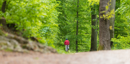 rear view: Male Cyclist Riding the Bike on the Beautiful Spring Forest Trail. Rear view. Man Cycling in Nature.