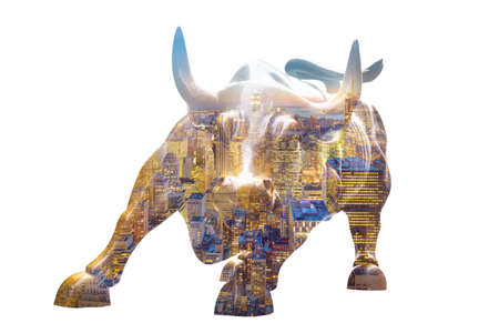 charging bull: Charging Bull isolated on white background. New York city night panorama layer over statue. Bull represents aggressive financial optimism and prosperity,