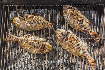 dorada: Dorada Fish Barbecued On The Grill Outdoor. Spanish Cuisine Stock Photo