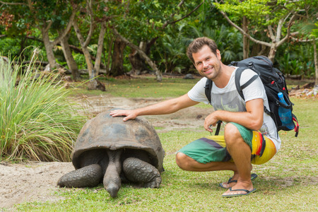 gigantea: Male tourist caressing and admiring big old Aldabra giant tortoises, Aldabrachelys gigantea, in National Marine Park on Curieuse island, close to Praslin on Seychelles. Stock Photo