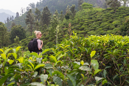 ella: Active caucasian blonde woman enjoying fresh air and pristine nature while tracking among tea plantations near Ella, Sri Lanka. Backpacking outdoors tourist adventure.