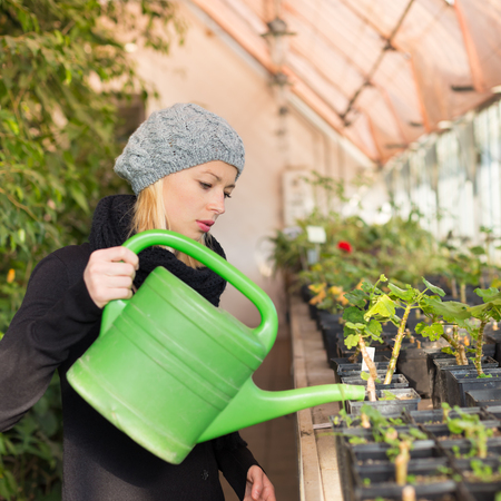 Portrait of florists woman working with flowers in a greenhouse holding a watering can in her hand. Small business owner.