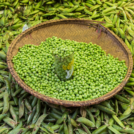 haricot: Green peas, Pisum sativum, being sold at the local food market.