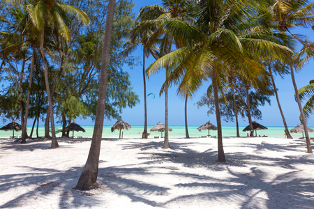 Perfect white sandy beach with palm trees, Paje, Zanzibar, Tanzania