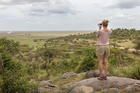 Female tourist looking through binoculars on African safari in Serengeti national park, Tanzania, Afrika. Banco de Imagens