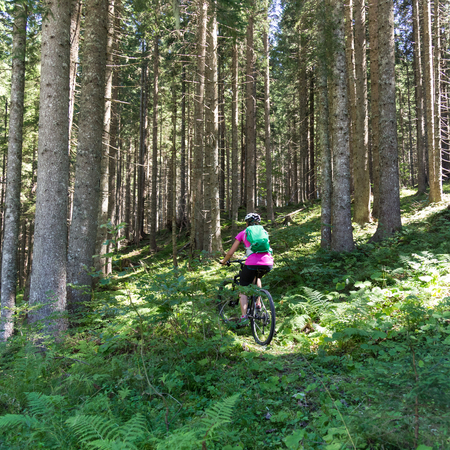 Active sporty woman riding mountain bike on demanding forest trail.