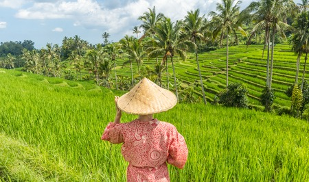 Relaxed fashionable caucasian woman wearing red asian style kimono and traditional asian paddy hat looking at beautiful green rice fields and terraces on Bali island.