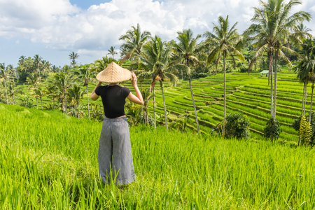 Relaxed fashionable caucasian female tourist wearing small backpack and traditional asian paddy hat looking at beautiful green rice fields and terraces on Bali island. Stok Fotoğraf