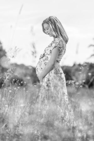 Portrait of beautiful pregnant woman in white summer dress relaxing in meadow full of yellow blooming flovers. Concept of healthy maternity care. Black and white image.