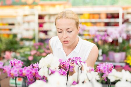 Beautiful female customer smelling colorful blooming orchids in retailers greenhouse. Stockfoto