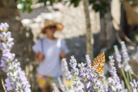 Defocused image of young female traveler wearing straw sun hat enjoying summer on Mediterranean cost strolling among lavander flowers on traditional costal village garden.