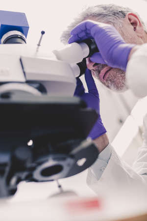Senior head scientist microscoping in the life science research laboratory. Biotechnology research.