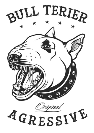 Bull terrier vector illustration on white background. Text is on the separate later.