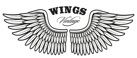 Vintage wings, isolated on white background.