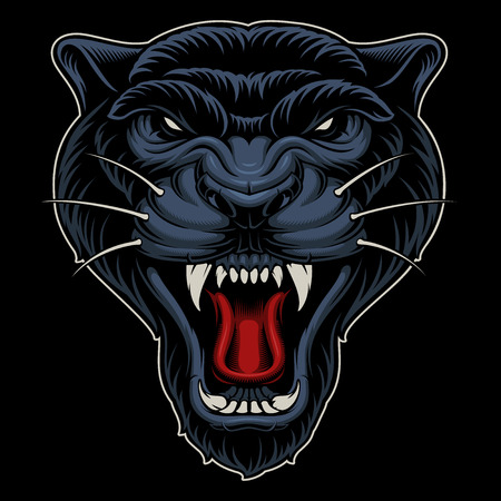 Vector illustration of panther.