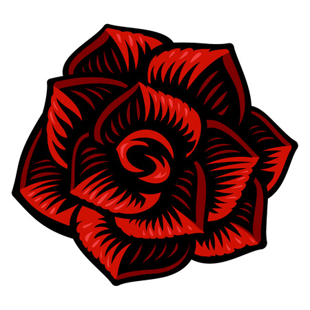Vector illustration of rose flower on the white background. Vettoriali