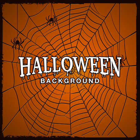 Halloween background with web of spider and grunge effect.