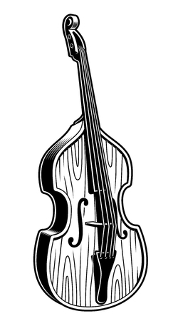 Vector illustration of double bass on white background