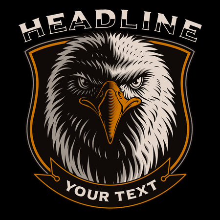 Vector illustration with head of eagle on dark background