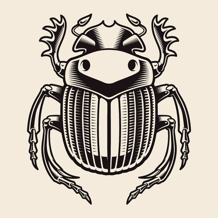 A black and white vector illustration of a Egyptian scarab, isolated on the white background. Illustration