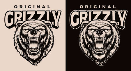 A black and white vector illustration of a grizzly head.