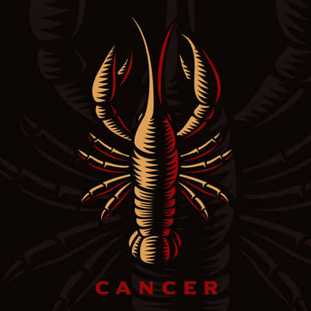 A vector illustration of Cancer zodiac sign 矢量图像