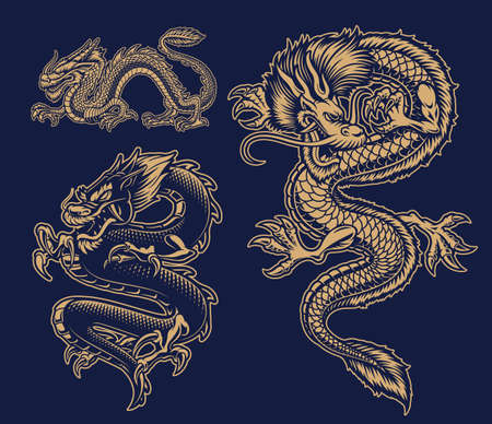A set of black and white vector Asian dragons on dark background.