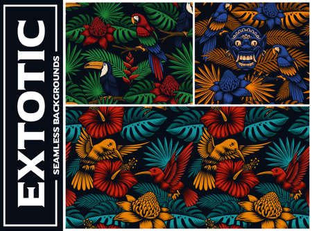 Set of colorfull tropical seamless backgrounds, these designs can be used as fabric prints as well as for many other uses. Stock Illustratie