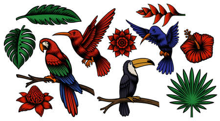 Set of colorful vector tropical birds and exotic flowers isolated on white background Stock Illustratie