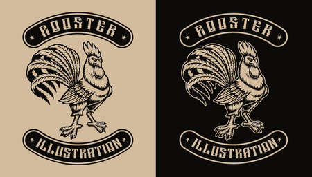 A black and white illustration of a rooster, that design can be used as shirt print as well as for many other uses. Stock Illustratie