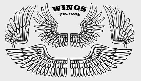 A set of different black and white vector wings isolated on white background Stock Illustratie