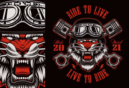 Colorful biker patch with a tiger biker, this design can be used as well as a t-shirt print.