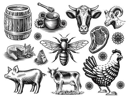 A set of black and white vector illustration of farm animals in a vintage style isolated on white background