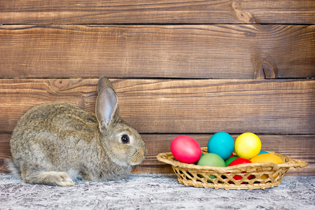 Gray rabbit with a basket of Easter eggs on the background of wooden boards, the concept for the holiday of Easter