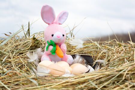 a small plush rabbit in a nest with Easter eggs, a Concept for Easter. The Easter hare steals eggs. Banco de Imagens
