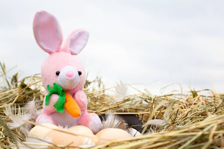a small plush rabbit in a nest with Easter eggs, a Concept for Easter. The Easter hare steals eggs. copy space