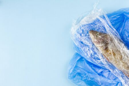 World Oceans Day. Dead fish in a plastic bag, concept to protect the oceans. The death of marine animals, copy space
