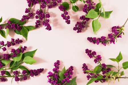 flowering branches of lilac on a pastel background with copy space. A bunch of serenity on a beige background with a place for an inscription. Spring concept Stok Fotoğraf